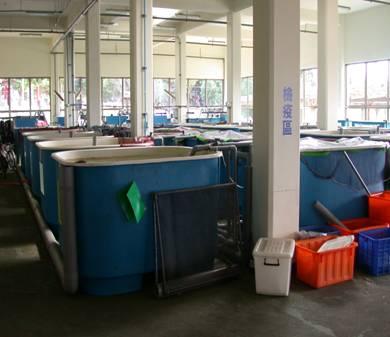 25.4頓FRP方形養殖缸 (海洋保育類收容使用)