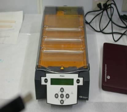 等電點電泳分析儀(Isoelectric Focusing electrophoresis)