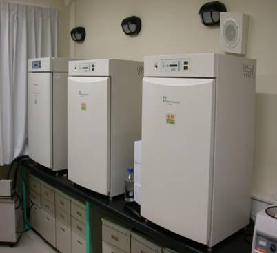 二氧化碳培養箱(CO2 incubator)